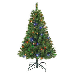 Polygroup  4-5 ft. Balmoral  Prelit 100 count Artificial Tree