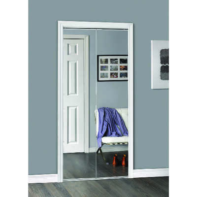 Erias  77.93 in. H x 23.5 in. W Bifold Mirrored Door