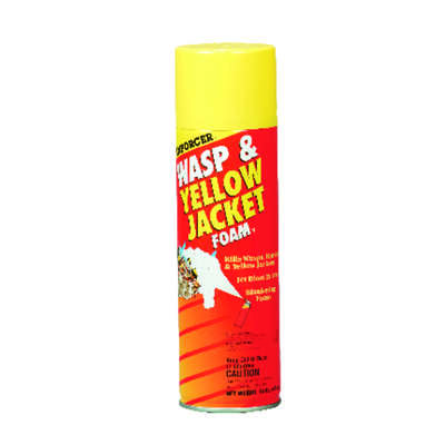 Enforcer Foam Insect Killer 16 oz.