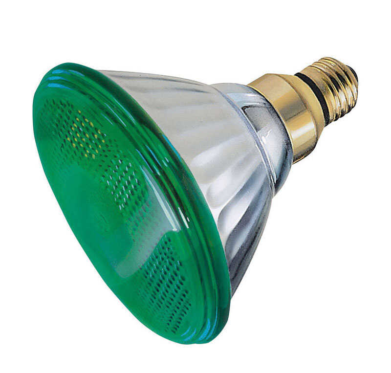 Ace  100 watts PAR38  Incandescent Bulb  Green  1 pk Floodlight