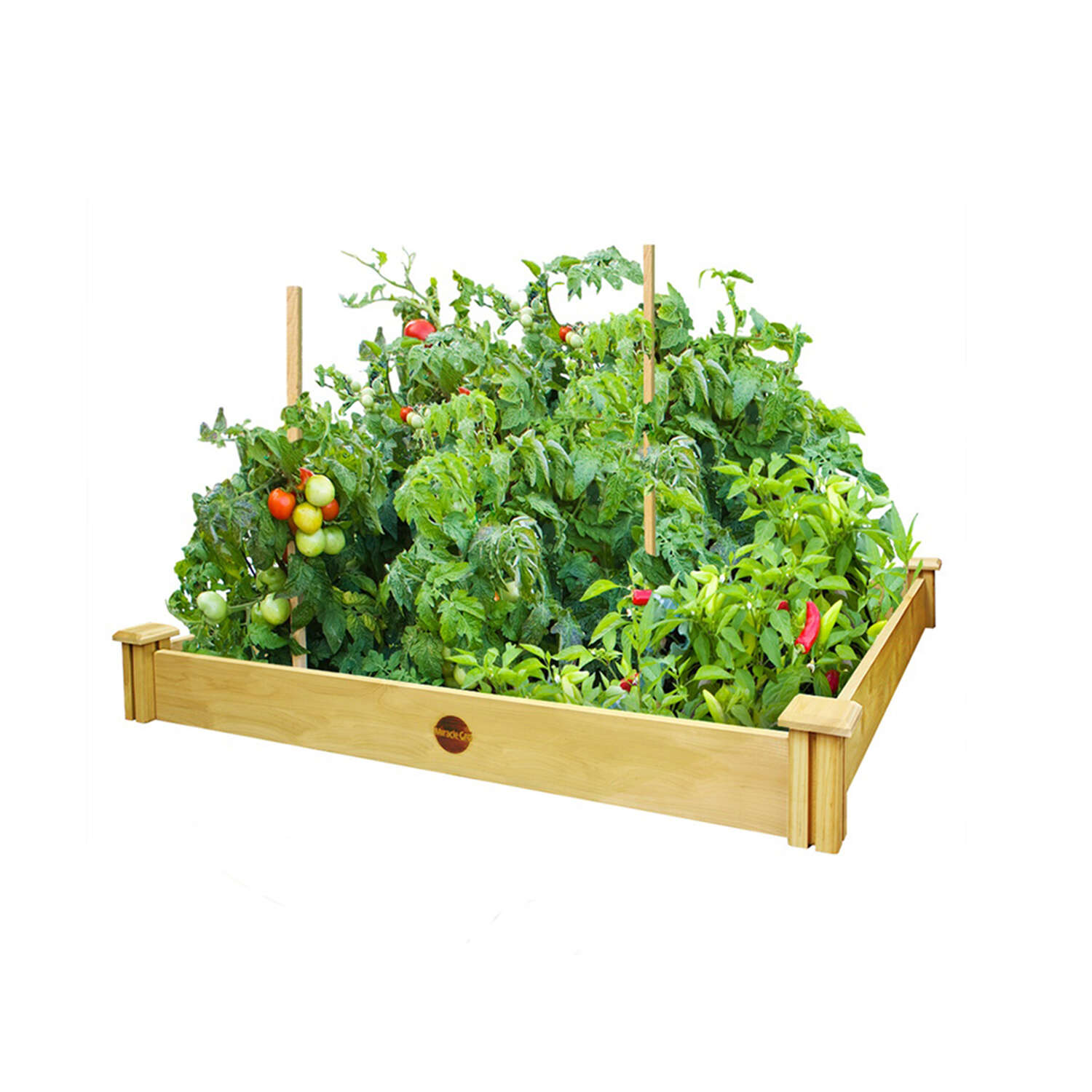 Miracle-Gro  5.5 in. H x 48 in. W Cedar  Elevated Garden Bed Kit  Brown