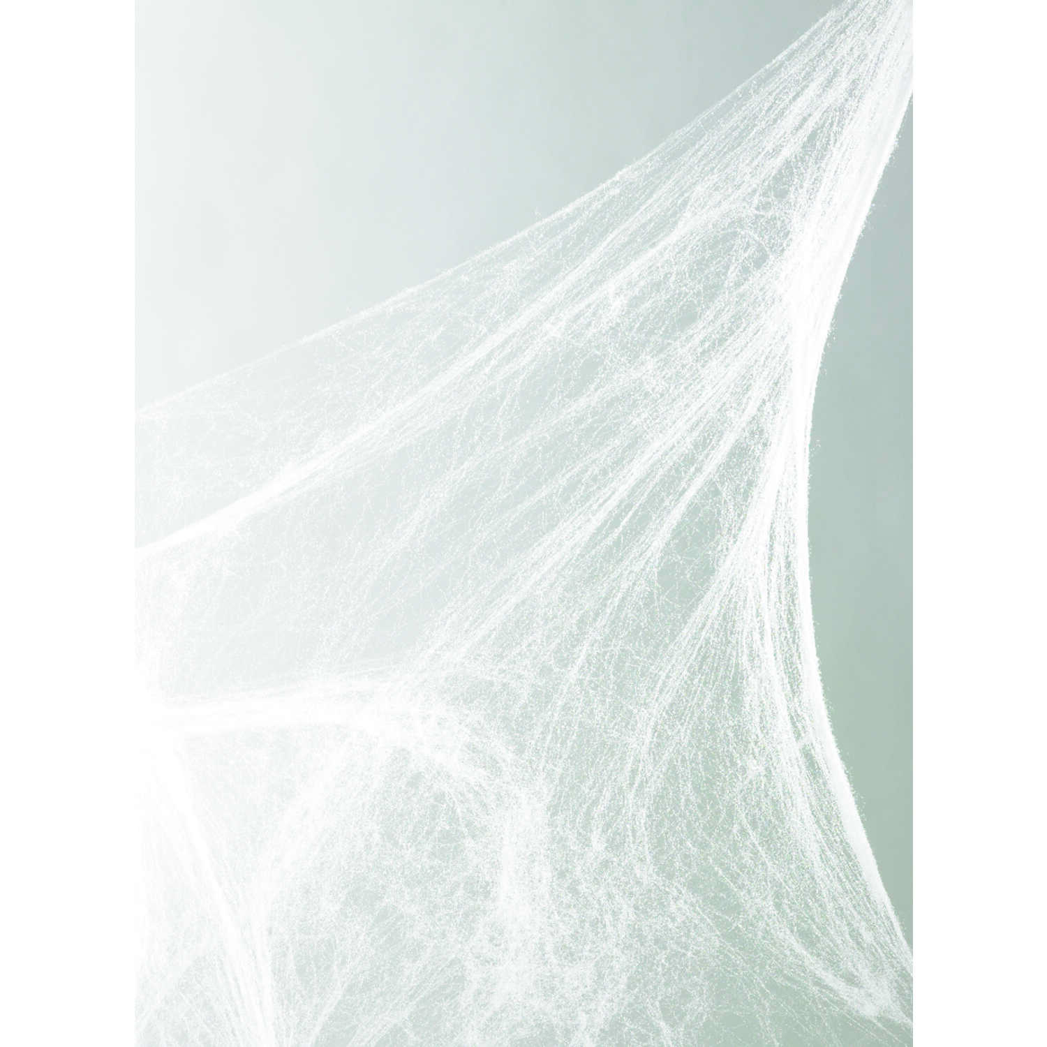 Fun World  Spider Web  Halloween Decoration  18 in. H x 18 in. W x 11 in. L 1 pk