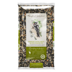 Audubon Park Perfect Balance Songbird Sunflower Seeds and Peanuts Bird Seed 5 lb.