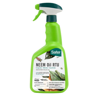 Safer Brand  Neem Oil  Organic Liquid  Insect Killer  32 oz.