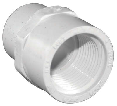 Charlotte Pipe  1/2 in. Socket   x 3/4 in. Dia. FPT  PVC  Pipe Adapter