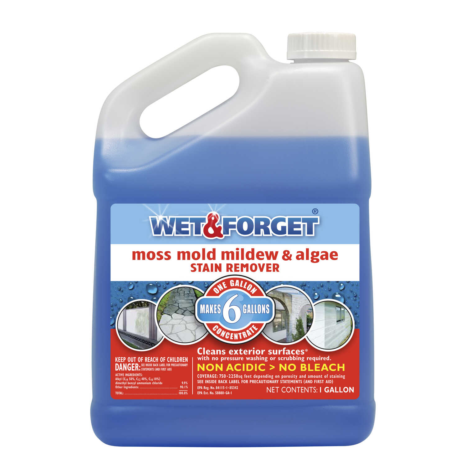 Hobby Diy Projects And Circuits Delabs Wet Forget Mold Mildew Stain Remover 1 Gal Ace Hardware