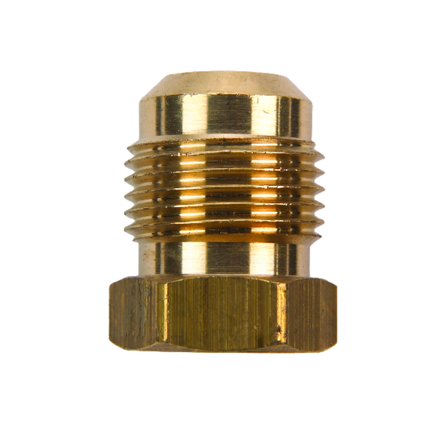 JMF  1/4 in. Dia. Flare To Flared  Yellow Brass  Hex Plug