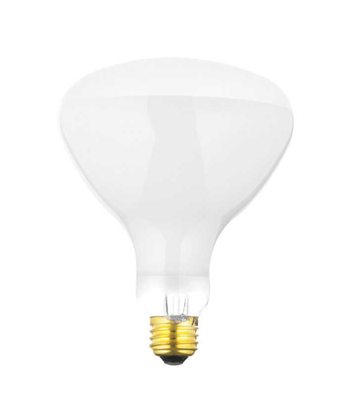 Satco  500 watts BR40  Floodlight  Incandescent Bulb  E26 (Medium)  Soft White  1 pk