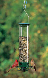 Droll Yankees  Flipper  Wild Bird  5 lb. Plastic  Tube  Bird Feeder  4 ports