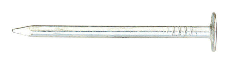 Ace  1-3/4 in. L Roofing  Electro-Galvanized  Steel  Nail  Smooth Shank  Large  1 lb.