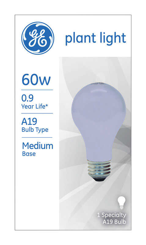 GE  60 watts A19  Incandescent Bulb  800 lumens Daylight  Decorative  1 pk