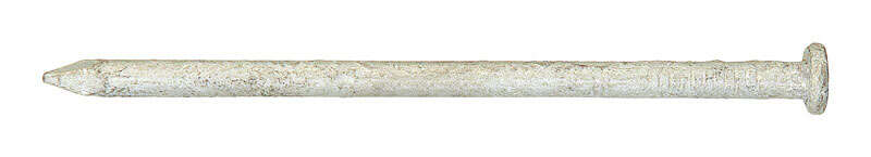 Ace  12D  3-1/4 in. L Common  Steel  Nail  Flat Head Smooth Shank  1  1 lb.