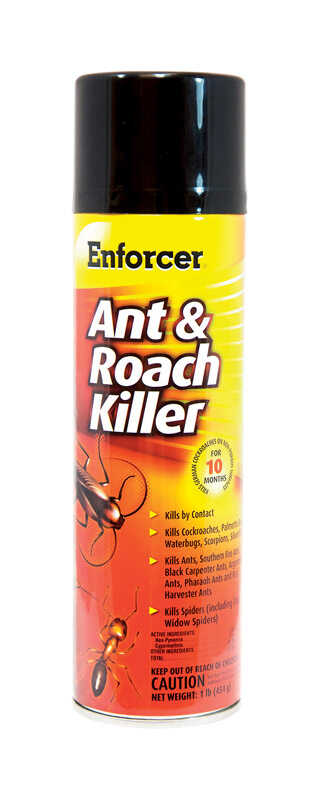 Enforcer  Ant & Roach  Liquid  Insect Killer  1 oz.