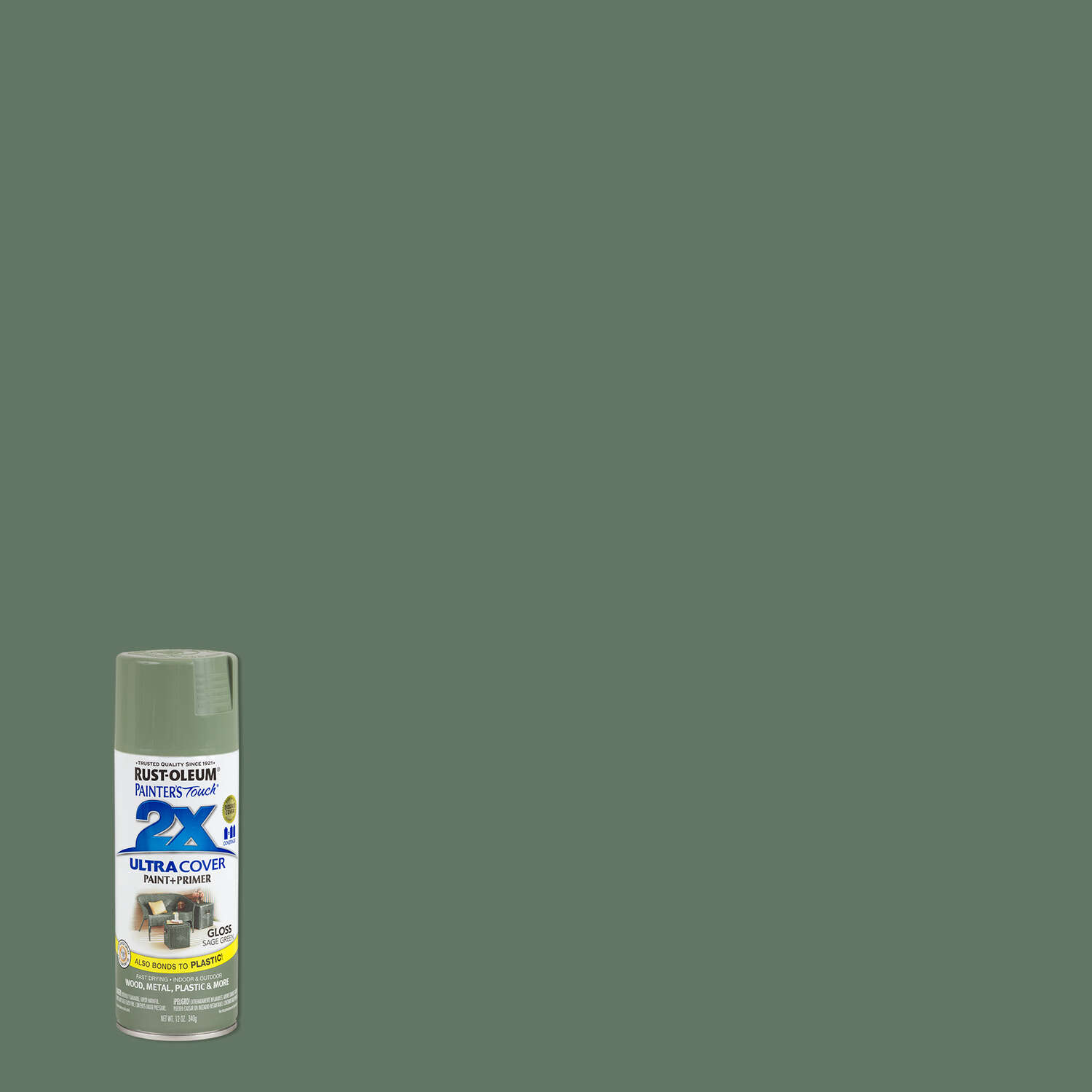 Rust-Oleum Painter's Touch 2X Ultra Cover Gloss Sage Green Spray Paint 12 oz.