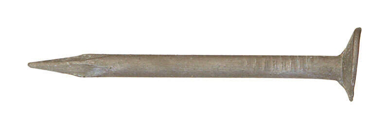 Ace  1-5/8 in. L Drywall  Steel  Nail  Cupped Head Smooth Shank  264  1 lb.