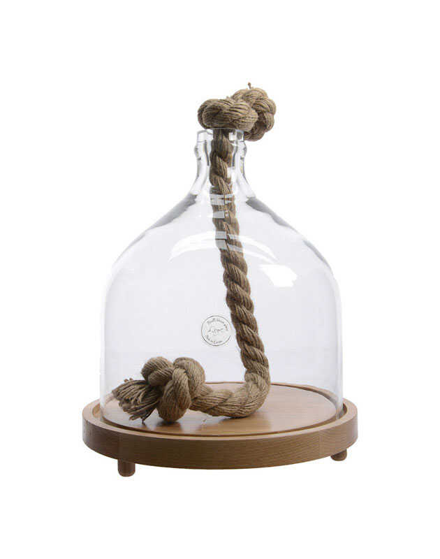 Decoris  14 in. H x 11 in. W x 11 in. L Clear  Glass  Cloche With Rope