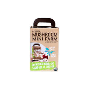 Back to the Roots  Mushroom Mini Farm  1 pk