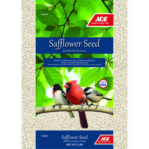 Ace  Assorted Species  Wild Bird Food  Safflower Seeds  5 lb.