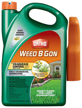 Crabgrass and Weed