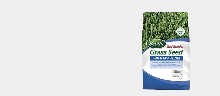 Scotts Grass Seed