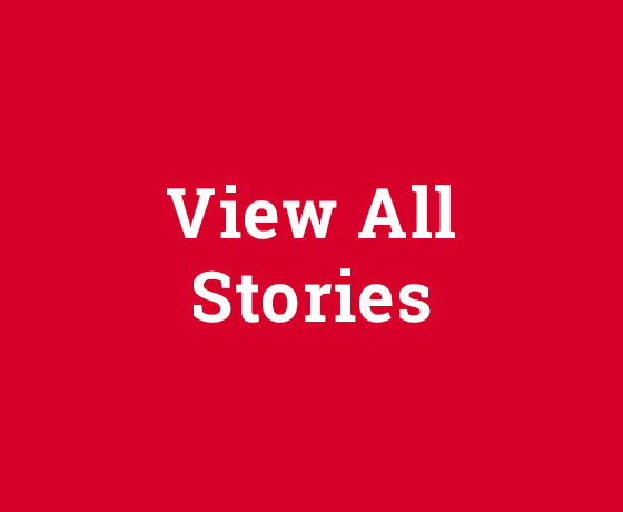 View All Stories