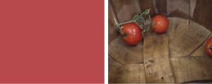 Vine Ripened Tomato