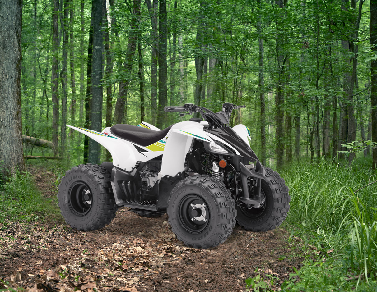 Action image of 2021 YFZ50