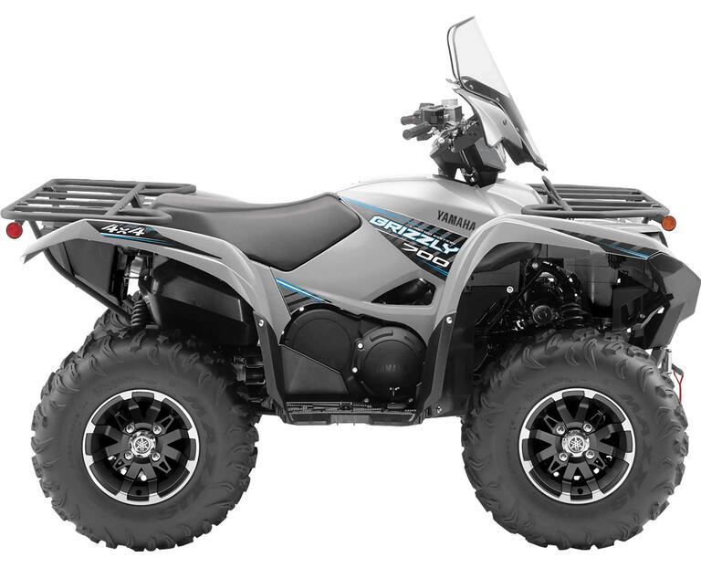 2020 GRIZZLY EPS LE, color Matte Silver